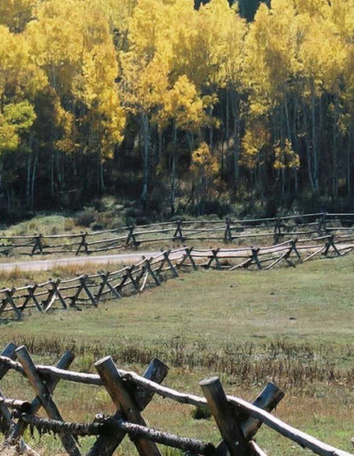 Stagecoach_Fence
